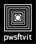 PWSFTViT