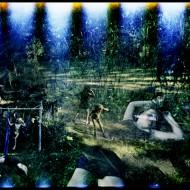 Justin Maxon, Zwolnij… złap oddech… masz tylko jedno życie, FF2011