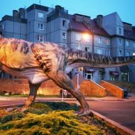 Silesian University in Opava, Tomasz Wiech, In Poland, FF2011, 01