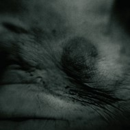 Transgresja, Magda Hueckel, Autoportret obsesyjny, FF2011