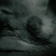 Transgression, Magda Hueckel, Obsessive Self-portrait, FF2011