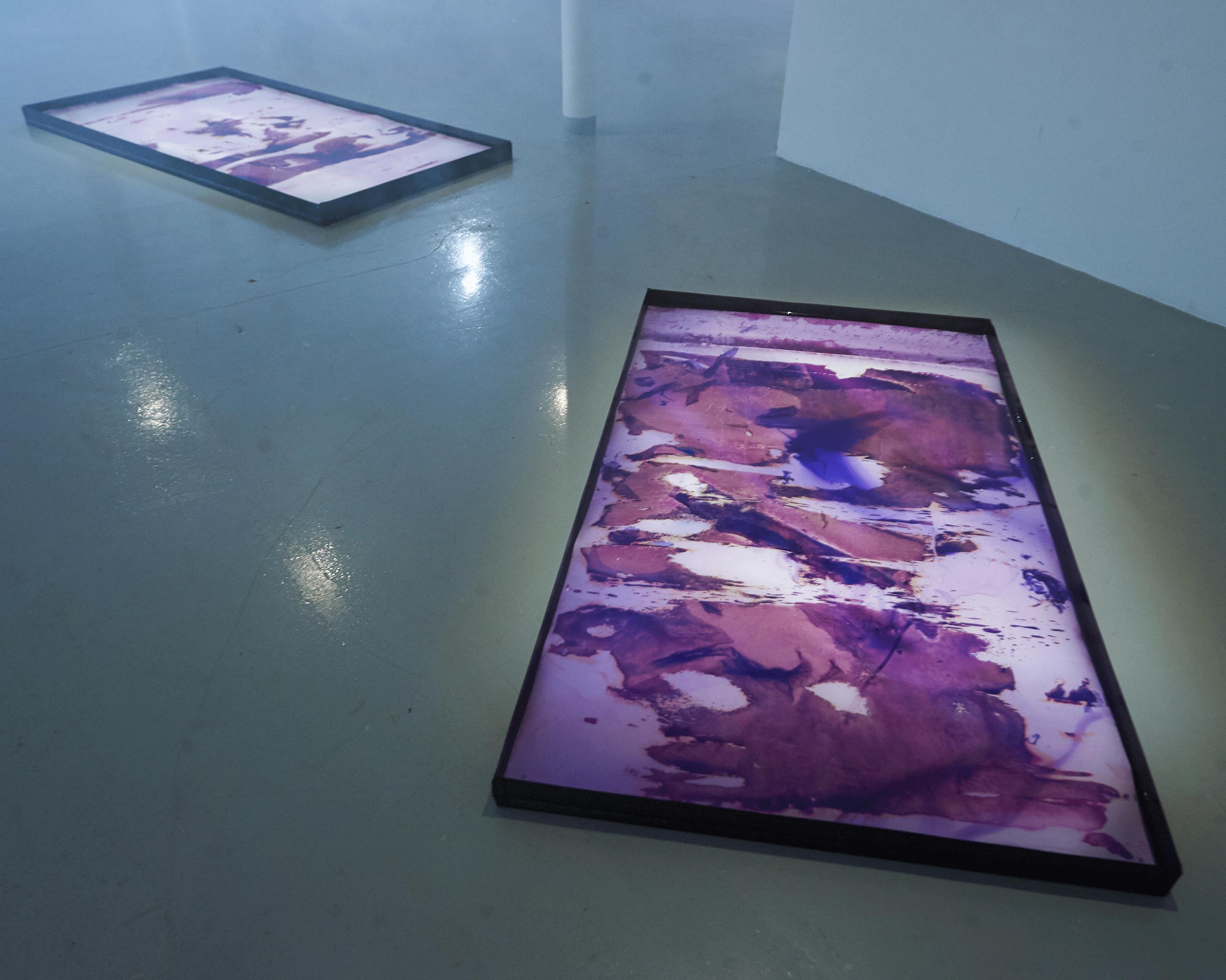 Parallel exhibition_Fotofestiwal2018